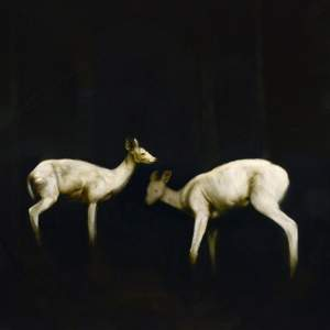 'Two Deers', Sergio Pilan Gómez ( Oil on canvas, 195 x 195 cm )