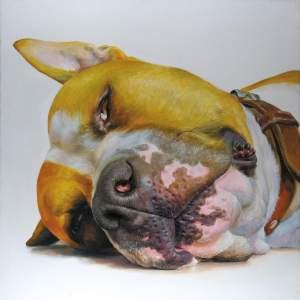 'Perro', Adrià Llarch Juanet ( ,  )