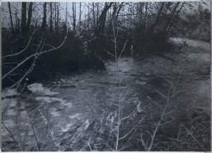 'Memòria d'un riu II', David Casals Moreno ( , 125 x 175 )